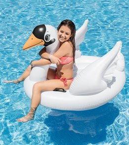 Intex Lil' Swan Ride-On (ages 14+)