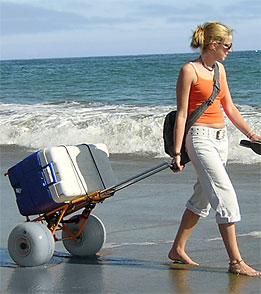 Wheeleez Inc Beach Cart Folding
