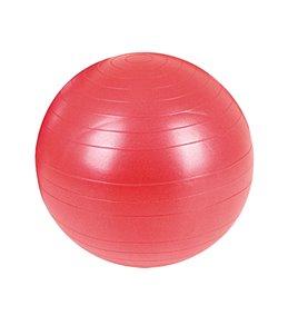 AeroMat Fitness Ball 55cm