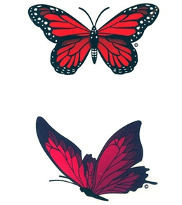 H2O-Toos Swim Tattoos Double Butterfly