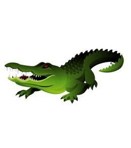 H2O-Toos Swim Tattoos Green Gator
