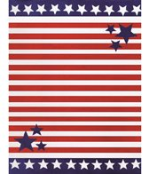 Dohler Stars & Stripes Towel for Two Beach Blanket 58 x 74