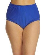 maxine-plus-size-spa-solid-chlorine-resistant-high-waist-bikini-bottom