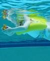 FREDS SWIM ACADEMY Swimtrainer