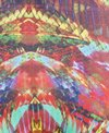 Speedo Rainbow Wings Printed Brief Swimsuit