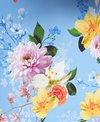 Nanette Lepore Monaco Bouquet Goddess One Piece Swimsuit