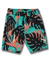 Volcom Boys' Mentawais Swim Trunk (Toddler, Little Kid, Big Kid)