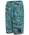 Nike Boys' 17