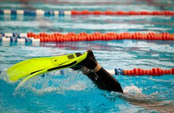 How to Choose Swim Fins